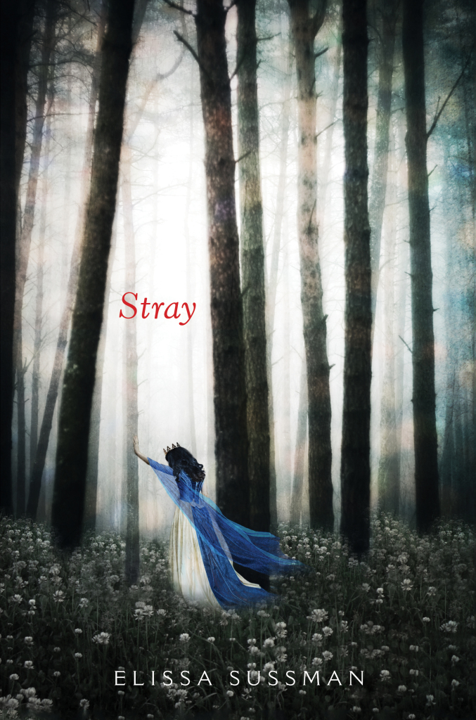 Stray Cover